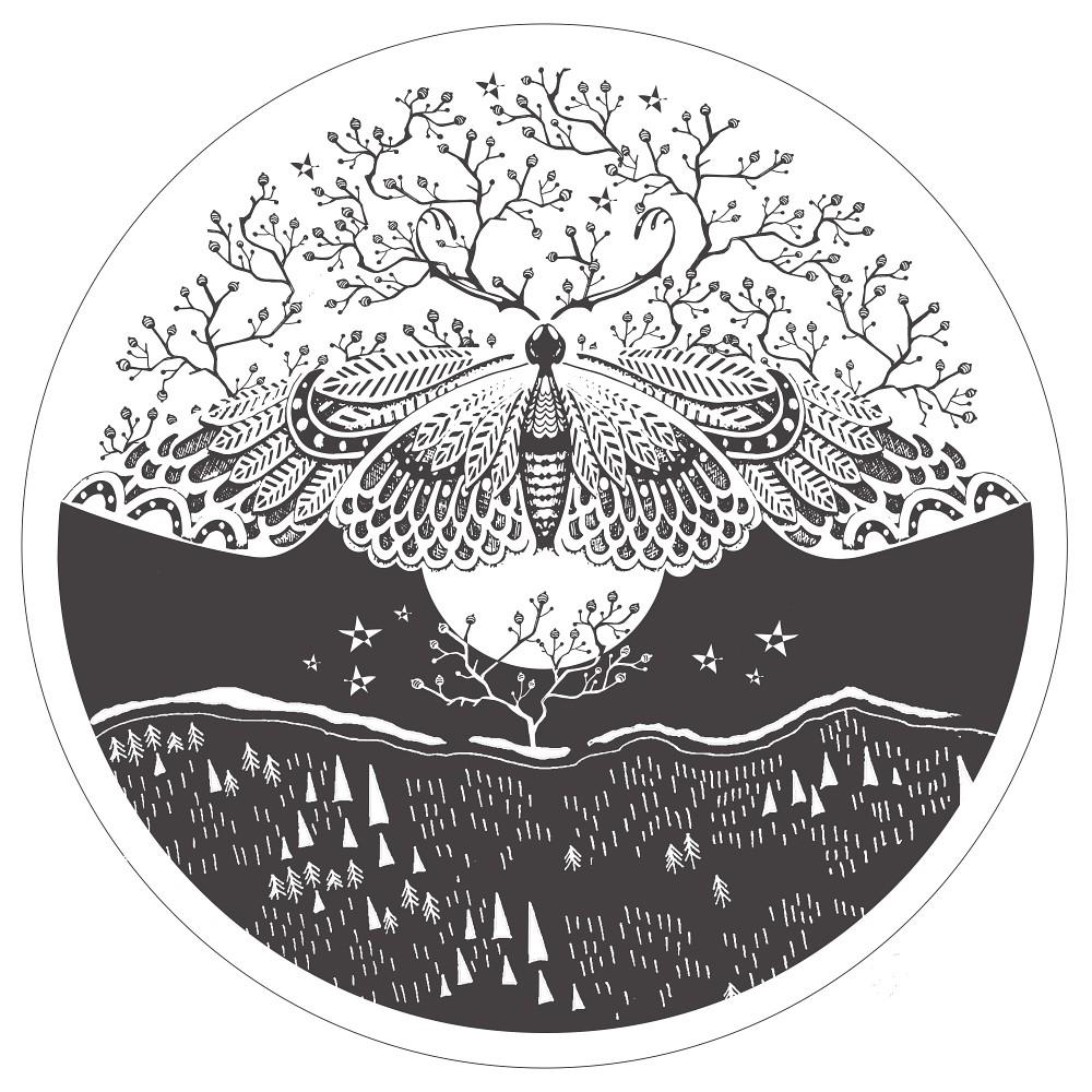 Moth Design Picture